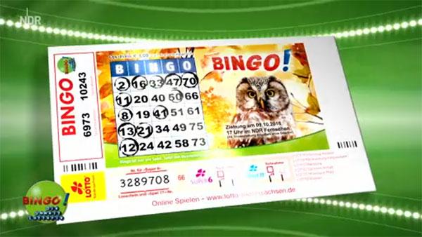 Wie Wird Bingo Gespielt